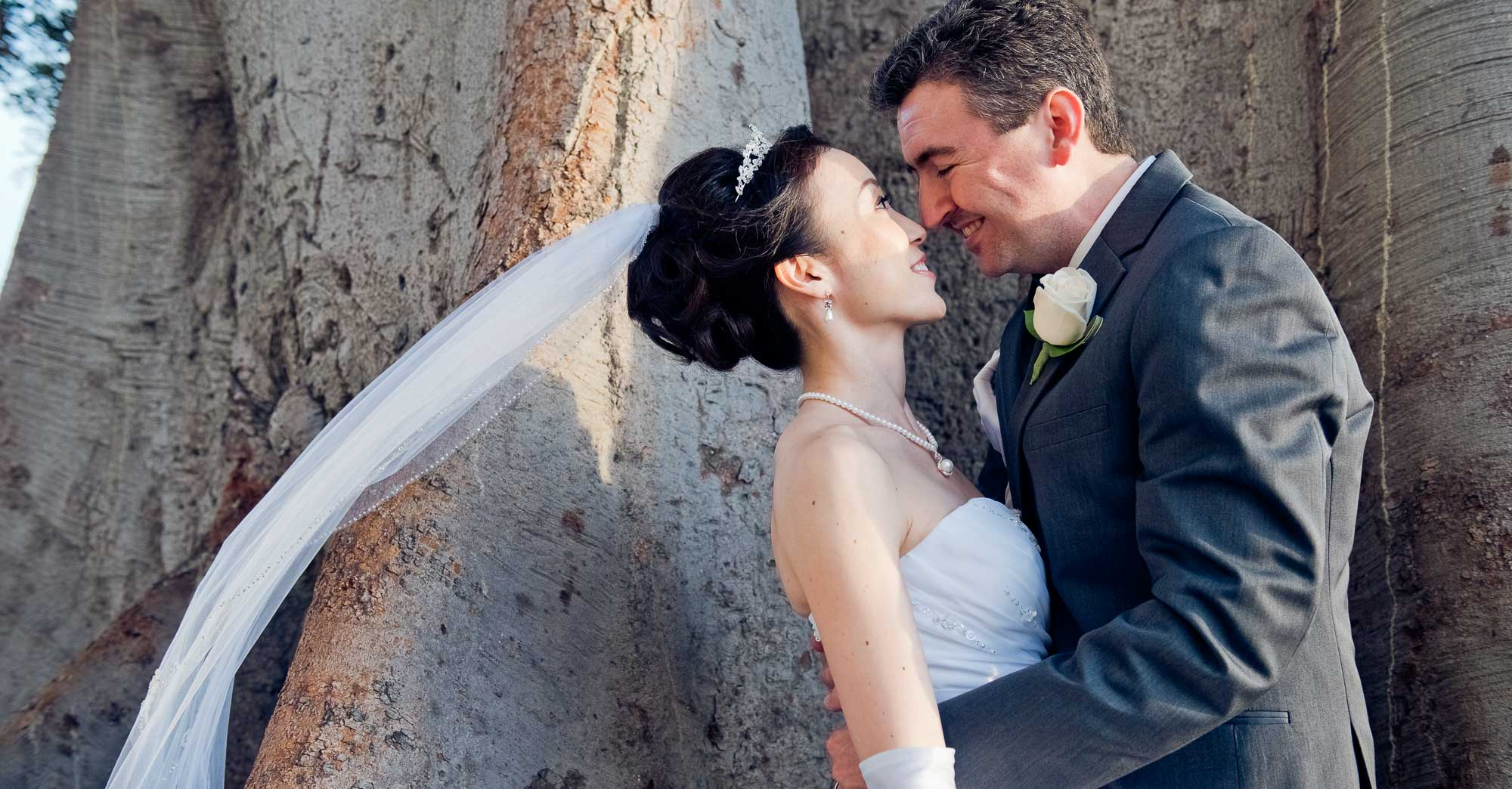 Tomomi & Seth's Redondo Beach Historic Library Wedding featured slider image